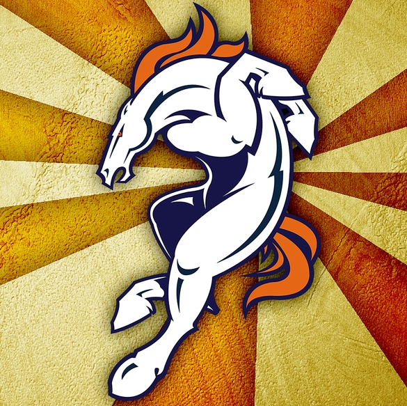 DENVER BRONCOS 2009 Preview