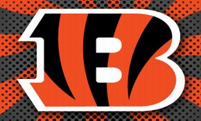 cincinnati-bengals-team-logo_4031925918_a5cd217d3d