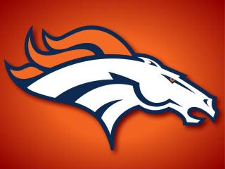 Denver Broncos 2012 Preview