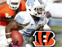 Giovani Bernard Fantasy 2013