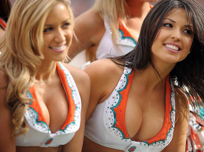 Miami Dolphins Cheerleader (7)