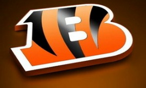 Andy Dalton for Offensive Rookie of the Year? 6