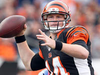 Andy Dalton and the Bengals Ready to Pounce
